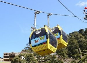7 Reasons to love the Ropeway Ride